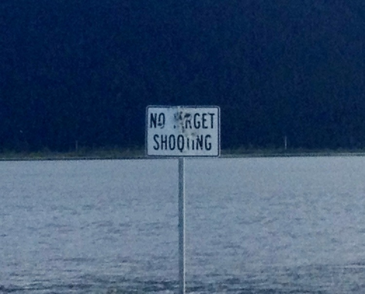 No Target Shooting.JPG